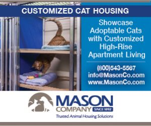 Customized Cat Housing