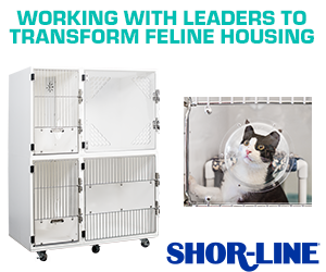 shor-line is working with leaders to transform feline housing