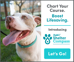Maddie's Fund Shelter Compass