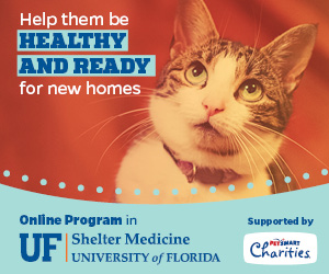 University of Florida Shelter Medicine Program
