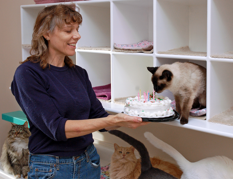 a woman presents a cat with a birthday cake