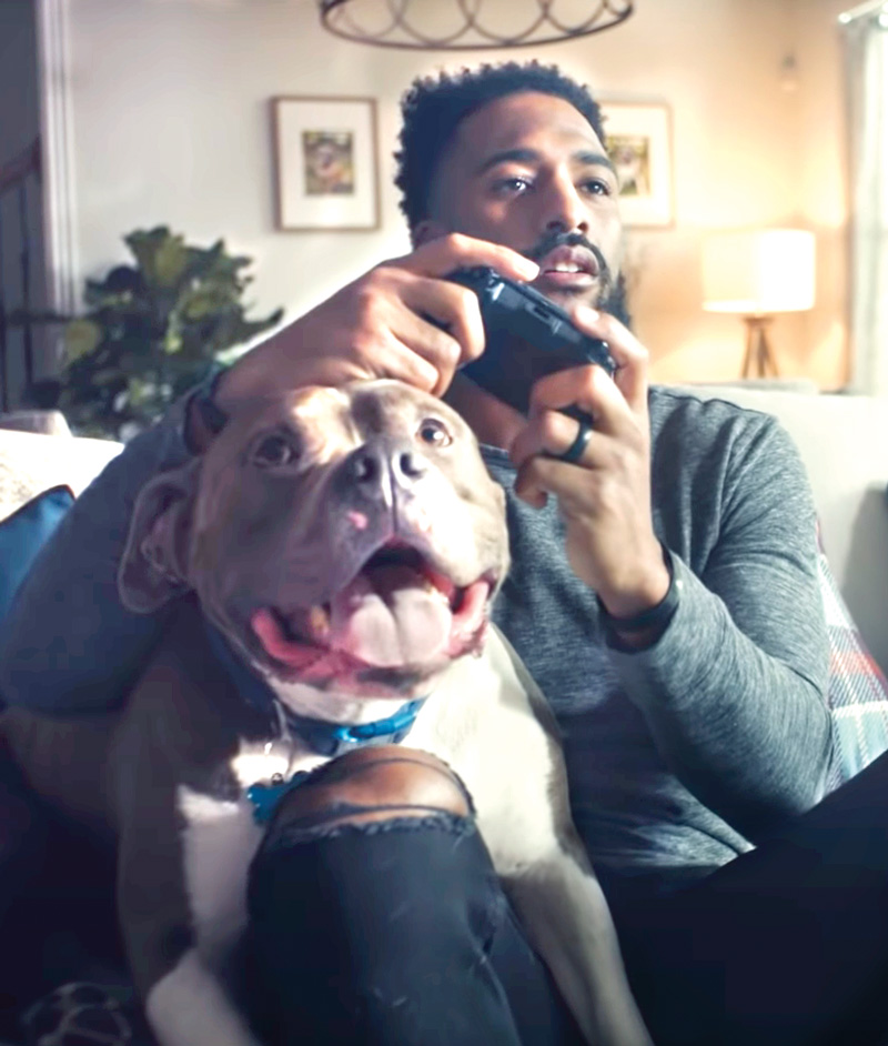a man plays video games with his dog on his lap