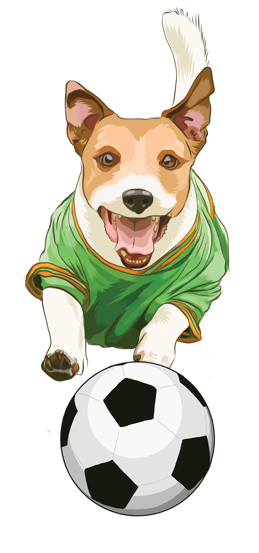 illustration of a dog in a sports jersey chasing a soccer ball