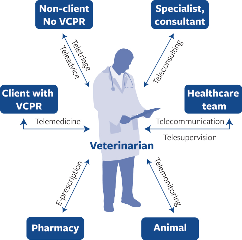 diagram of telemedicine process