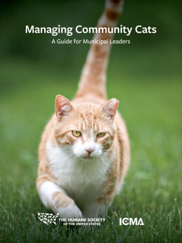 Managing Community Cats
