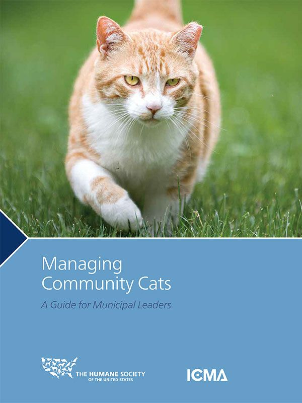 Managing Community Cats: A Guide for Municipal Leaders