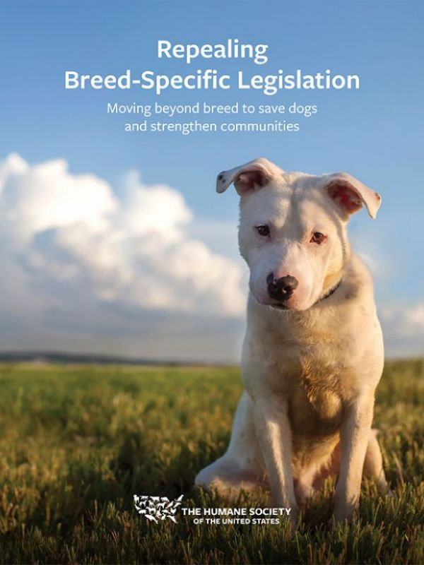 Repealing Breed-Specific Legislation