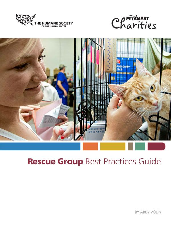 Rescue Group Best Practices Guide