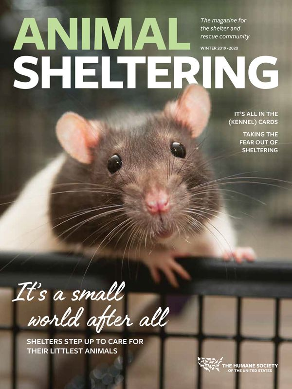 Animal Sheltering Winter 2019 cover
