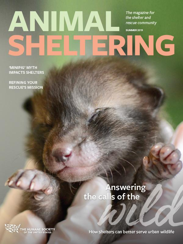 Animal Sheltering Summer 2019