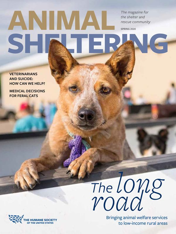 Animal Sheltering Magazine Spring 2020 Cover
