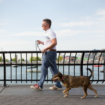 a man walking a dog along a bridge