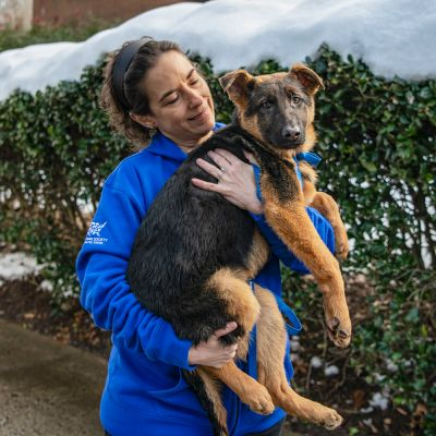a woman holds a german shepherd type puppy