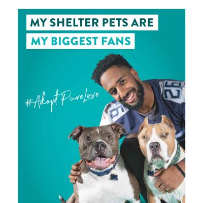 My shelter pets are my biggest fans