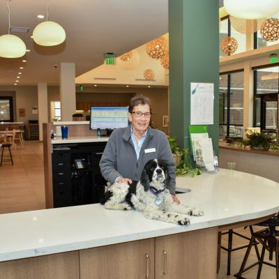 a woman stands at the front desk of a hotel with her foster dog