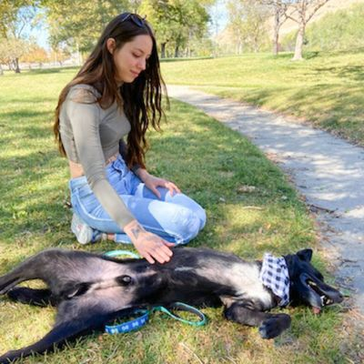 a woman pets the belly of a dog sprawled in the grass
