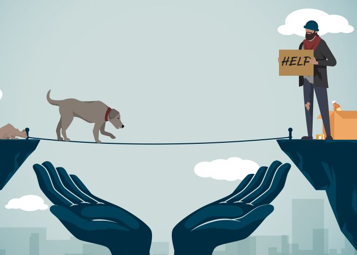 illustration of a dog and cat walking a tightrope to their homeless owner on the other side
