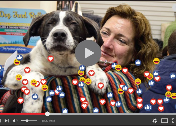 video player with social media icons overlaid on an image of a woman holding a dog