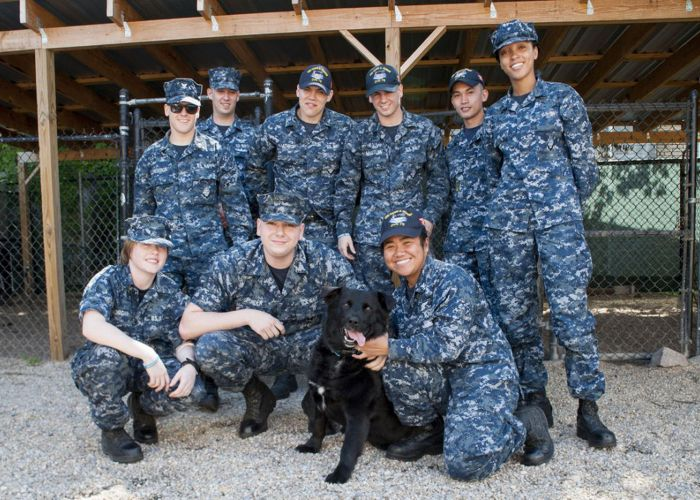 a group of men and women in military fatigues posing with a dog