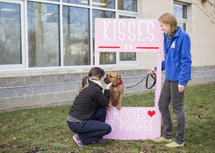 a woman greets a dog standing behind a $1 kisses sign