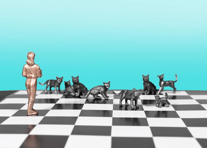 collage of a woman and a group of cats on a chessboard