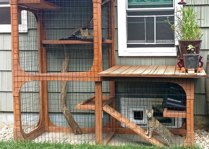 "Outdoor ""catios"" provide cats with the stimulation of the great outdoors, while keeping birds and other wildlife out of reach"