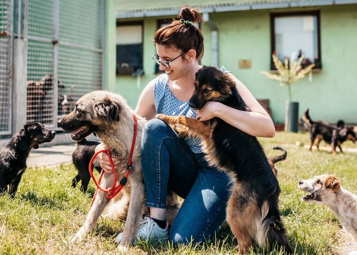 Woman outside with dogs at a shelter