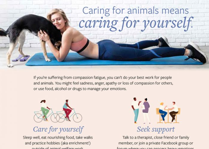 caring for animals means caring for yourself