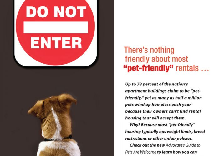 "There's nothing friendly about most ""pet-friendly"" rentals ..."