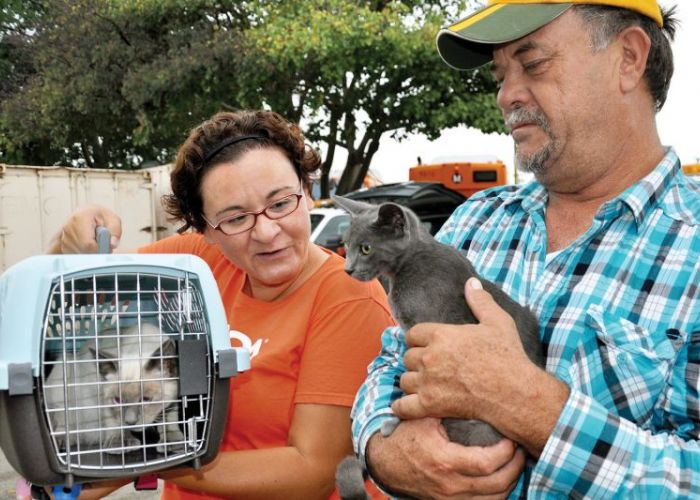 a woman holds up a crate containing a cat next to a man holding another cat