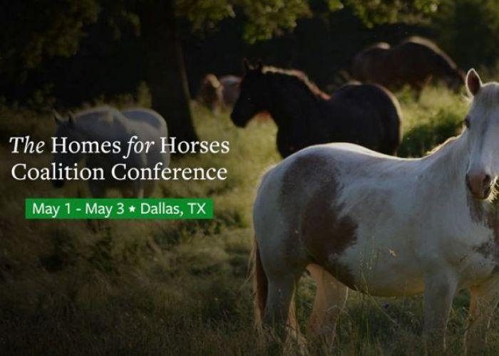 Homes for Horses Coalition conference