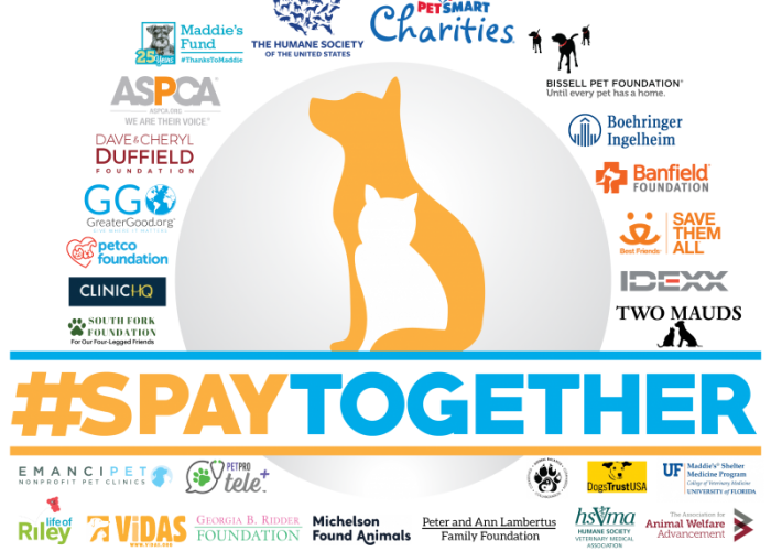 #SpayTogether logo and partners