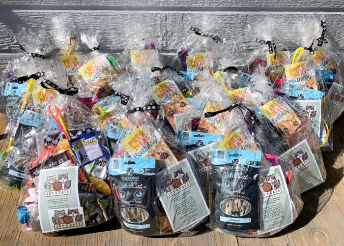 a large group of cat gift bags