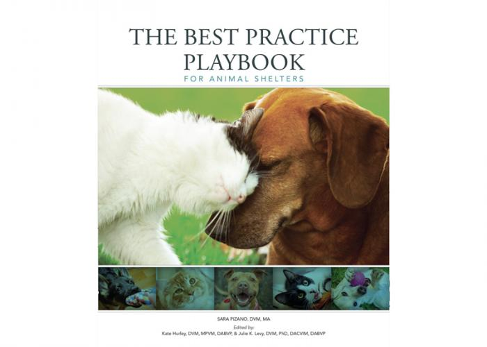 cover of the best practice playbook