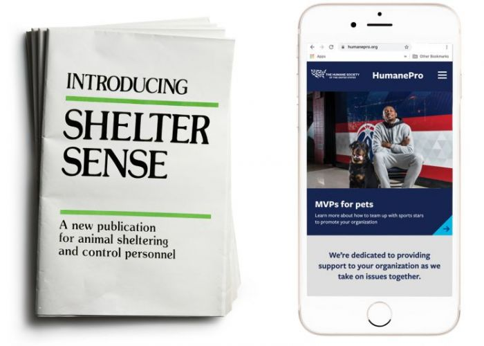 side by side of shelter sense magazine and humanepro.org on a phone