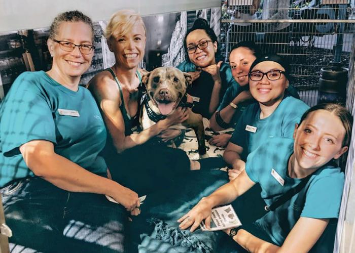 Maui Humane Society's Spring Fling Slumber Party