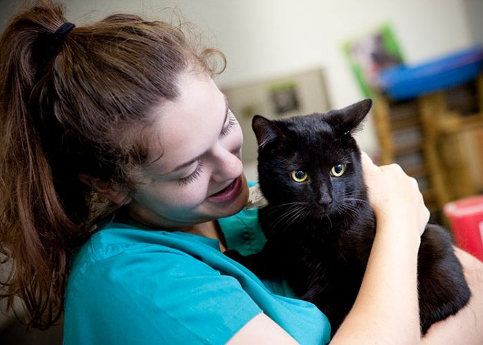 Woman holding a black cat